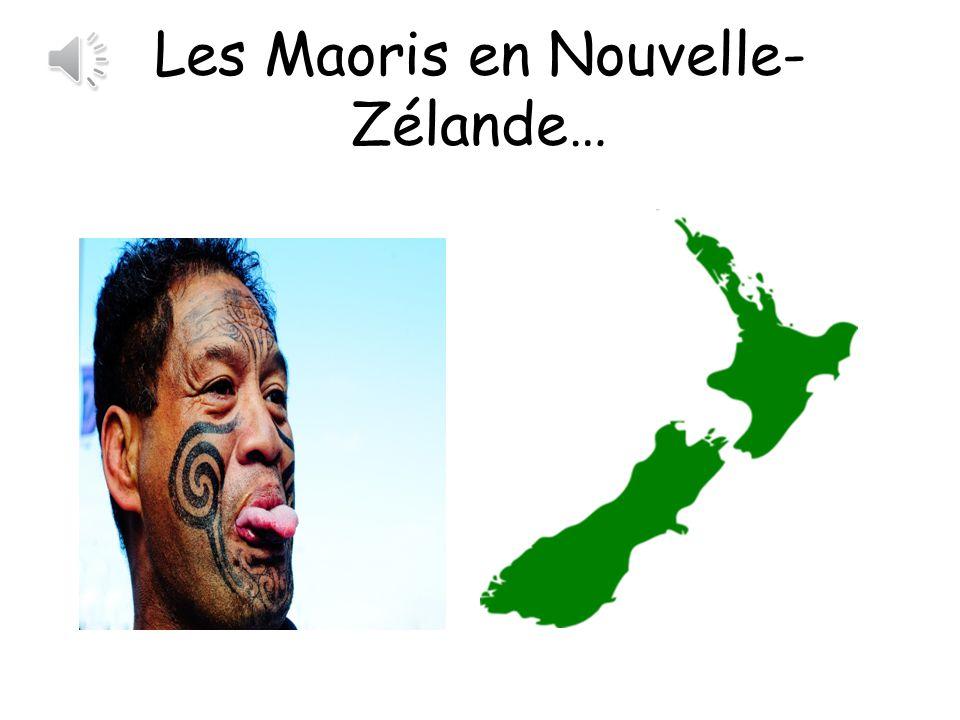 Les Maoris en Nouvelle-Zélande…