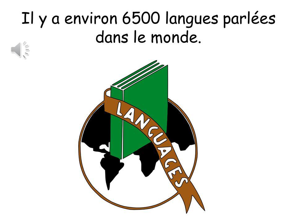 Il y a environ 6500 langues parlées dans le monde.