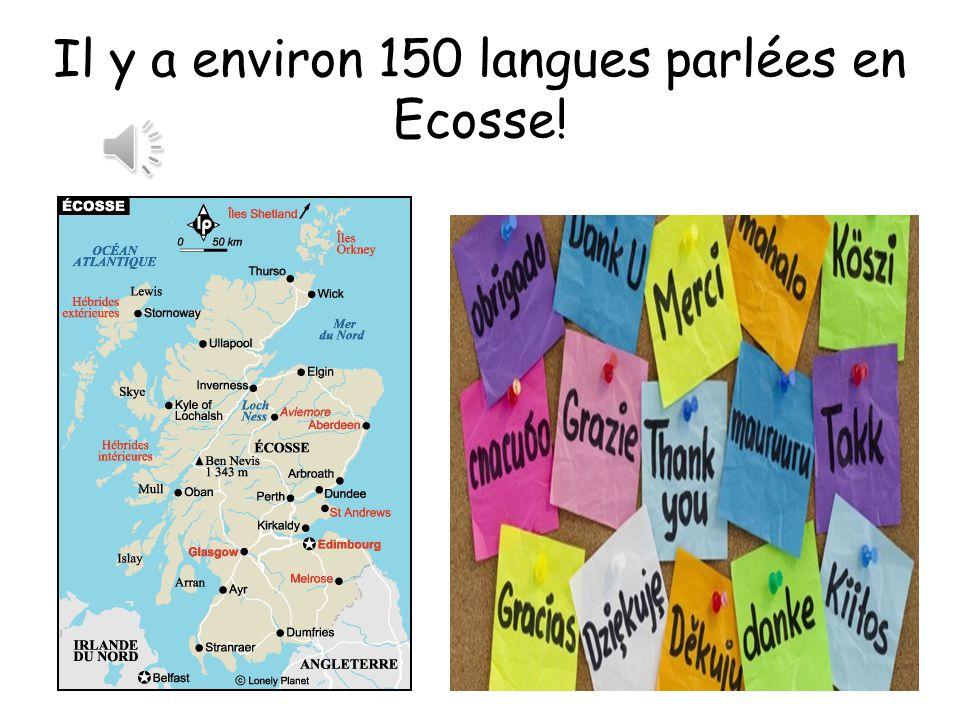 Il y a environ 150 langues parlées en Ecosse!