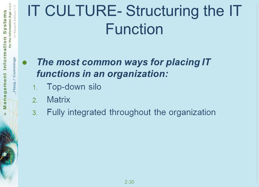 IT CULTURE- Structuring the IT Function