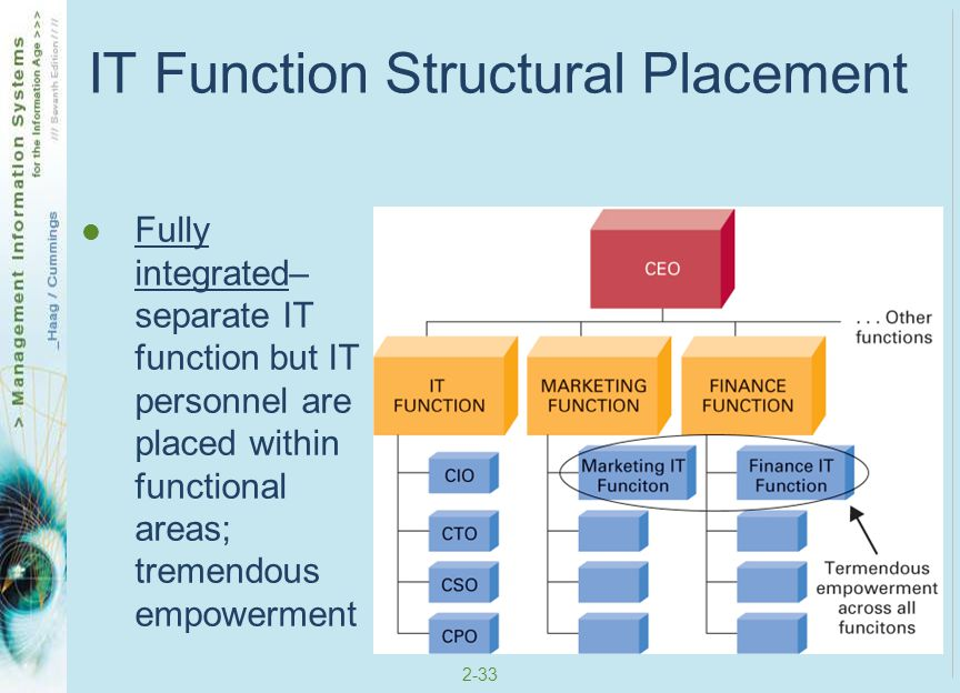 IT Function Structural Placement