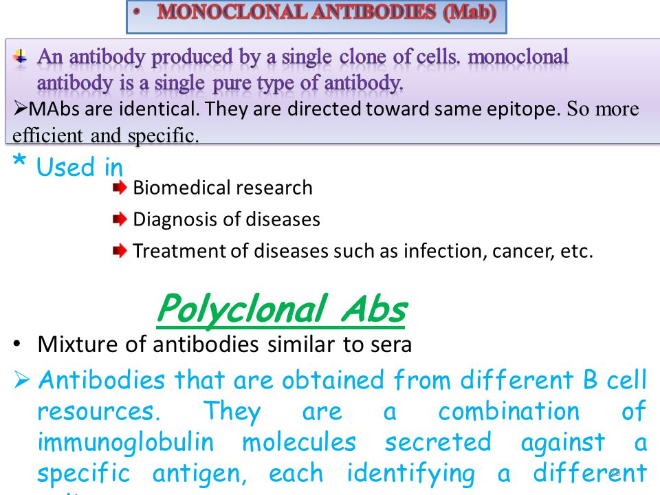 Polyclonal Abs * Used in Mixture of antibodies similar to sera