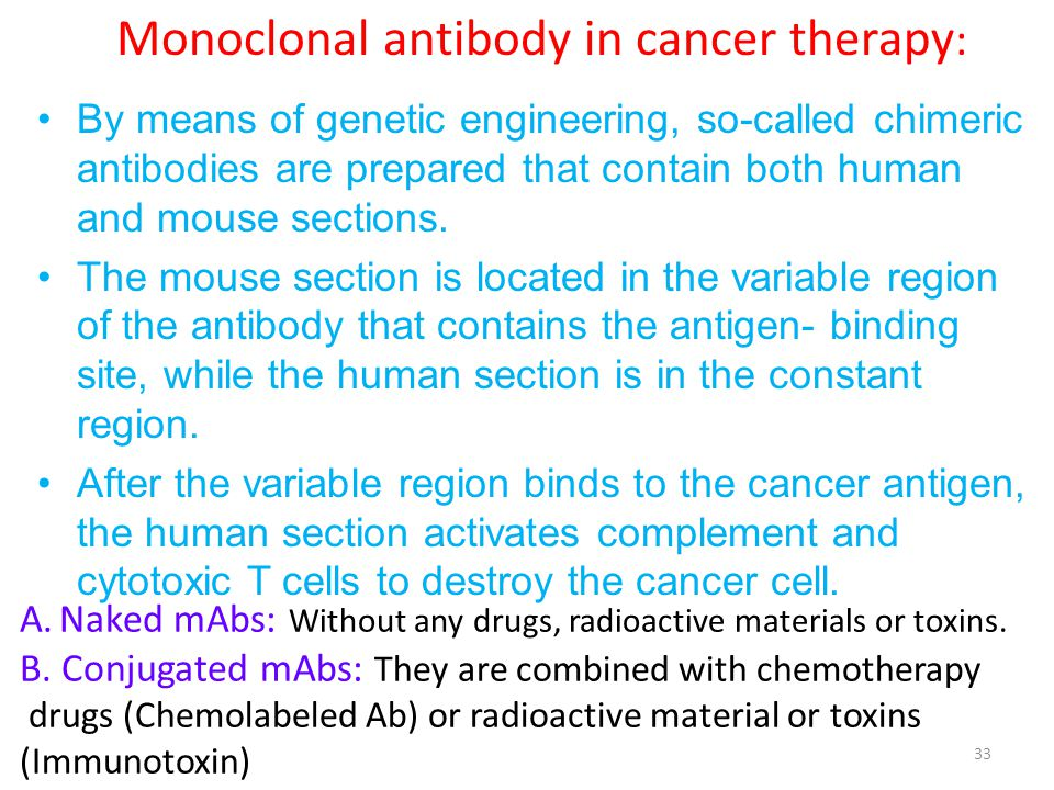 Monoclonal antibody in cancer therapy: