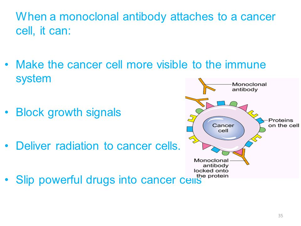 Make the cancer cell more visible to the immune system