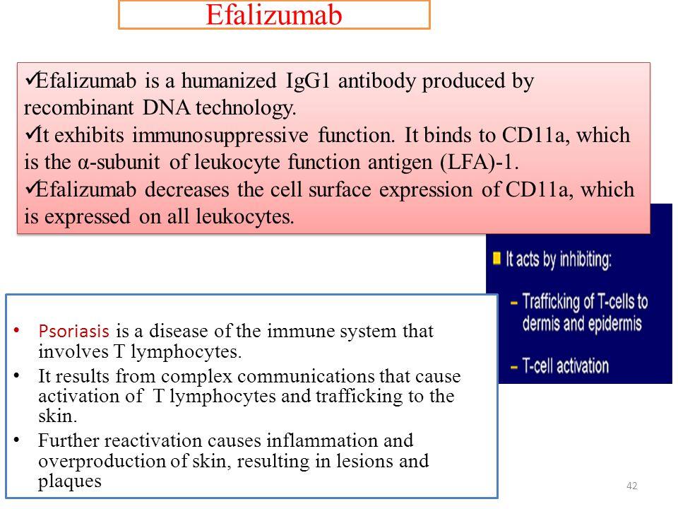 Efalizumab Efalizumab is a humanized IgG1 antibody produced by recombinant DNA technology.