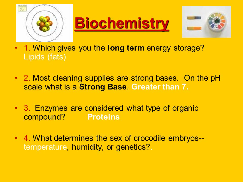 Biochemistry 1. Which gives you the long term energy storage Lipids (fats)