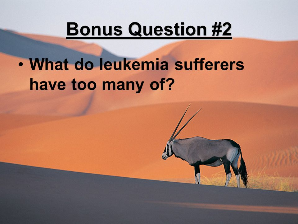 Bonus Question #2 What do leukemia sufferers have too many of