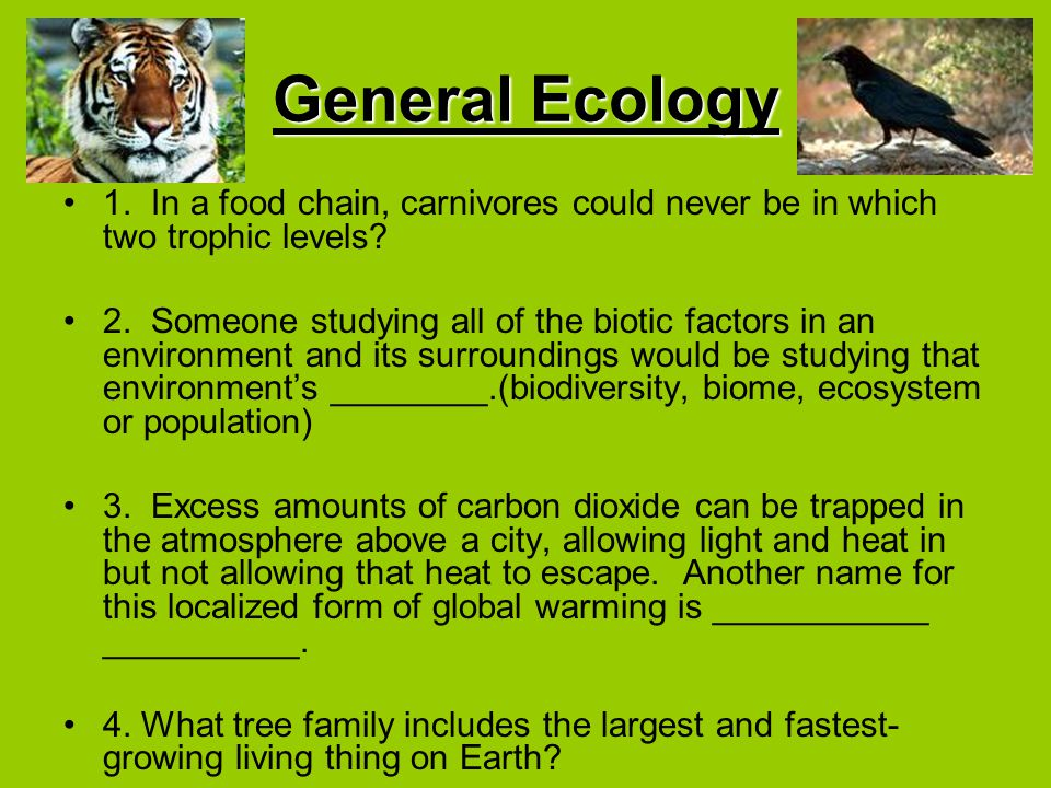 General Ecology 1. In a food chain, carnivores could never be in which two trophic levels