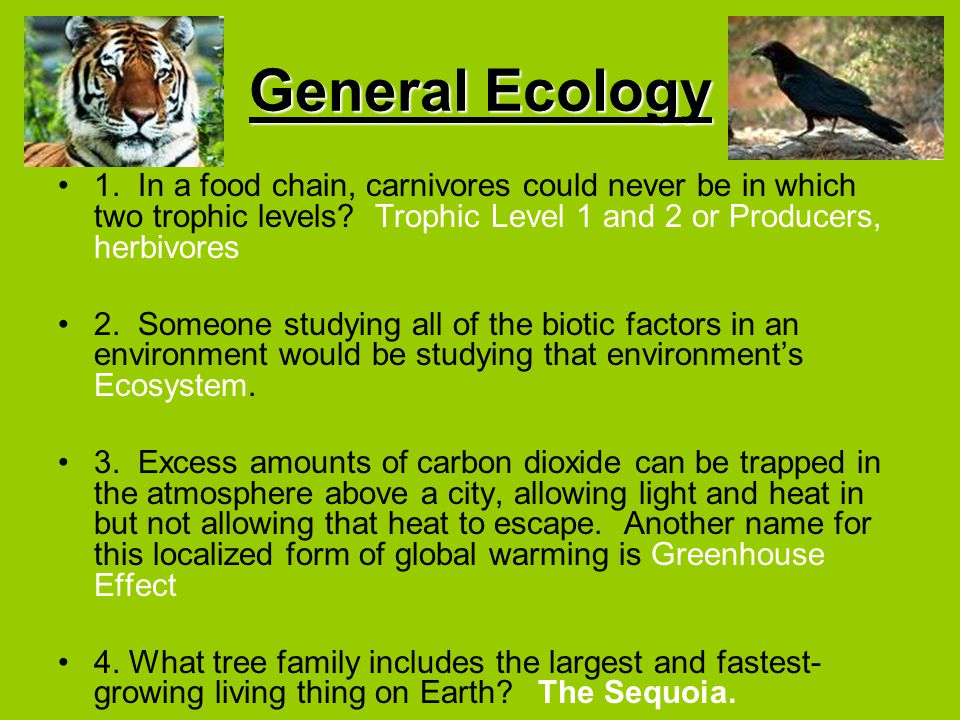 General Ecology 1. In a food chain, carnivores could never be in which two trophic levels Trophic Level 1 and 2 or Producers, herbivores.