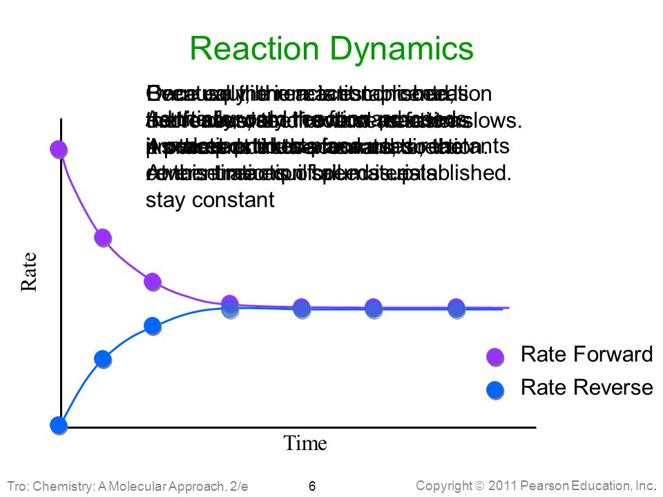 Reaction Dynamics Once equilibrium is established,