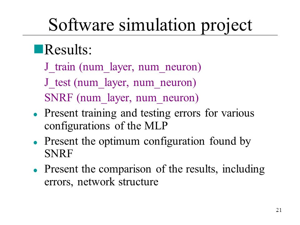 Software simulation project