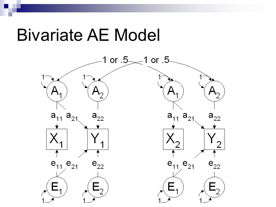 Bivariate AE Model