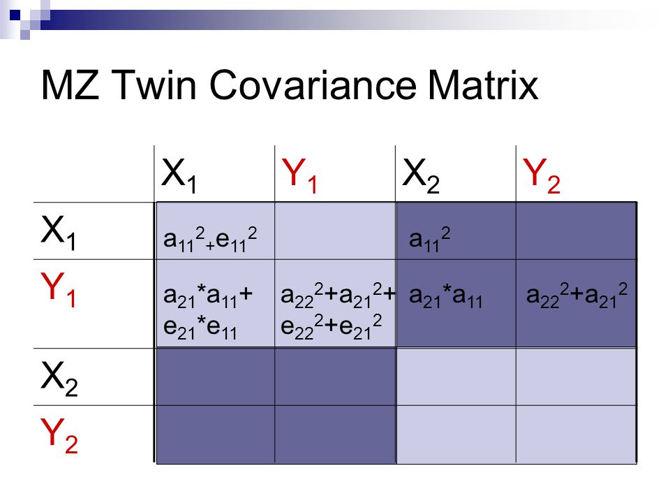 MZ Twin Covariance Matrix