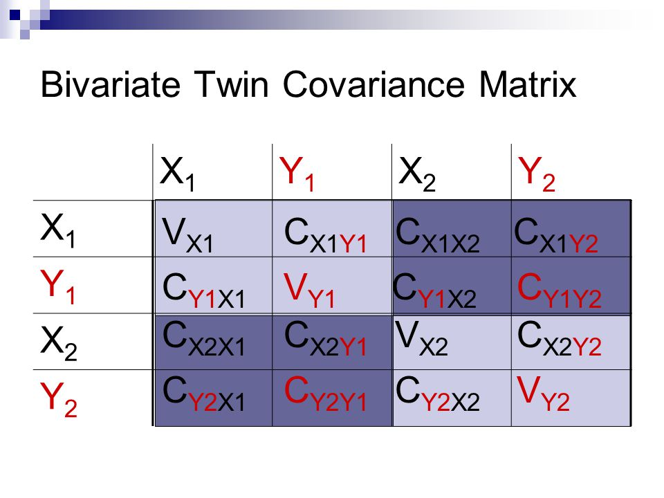 Bivariate Twin Covariance Matrix