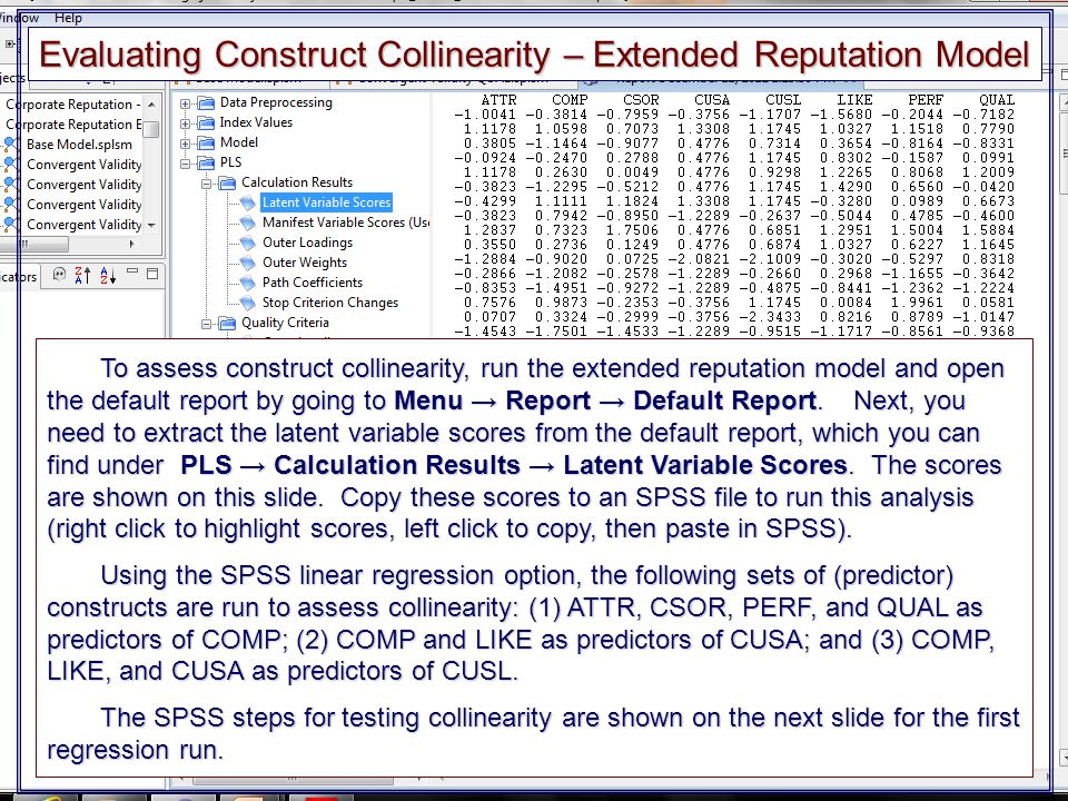 Evaluating Construct Collinearity – Extended Reputation Model