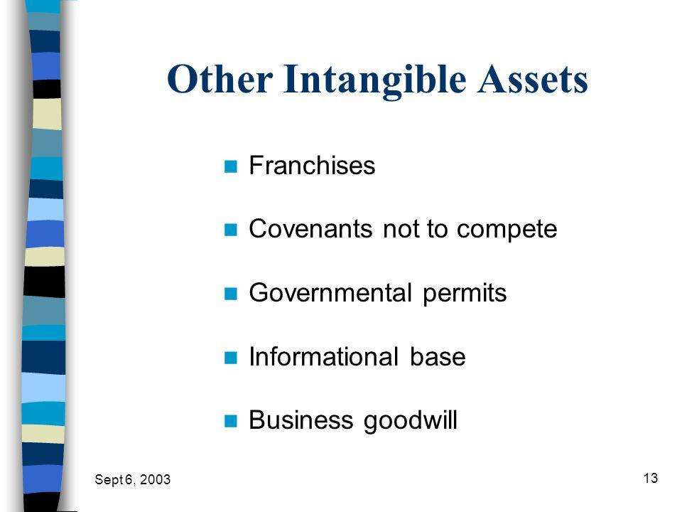 Other Intangible Assets