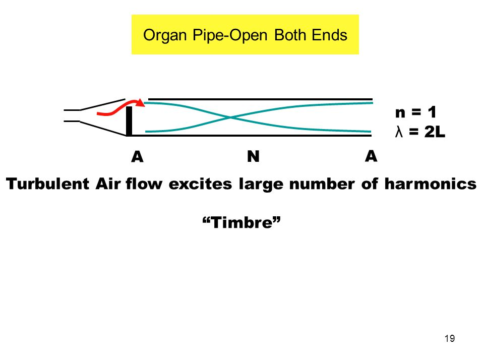 Organ Pipe-Open Both Ends