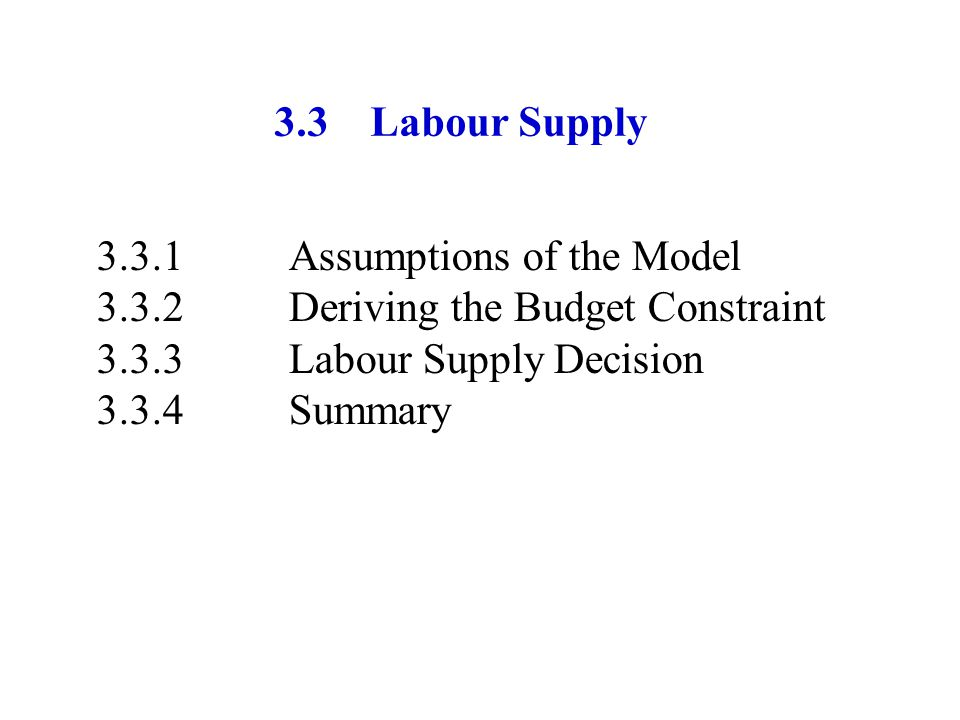 3.3 Labour Supply 3.3.1 Assumptions of the Model. 3.3.2 Deriving the Budget Constraint. 3.3.3 Labour Supply Decision.