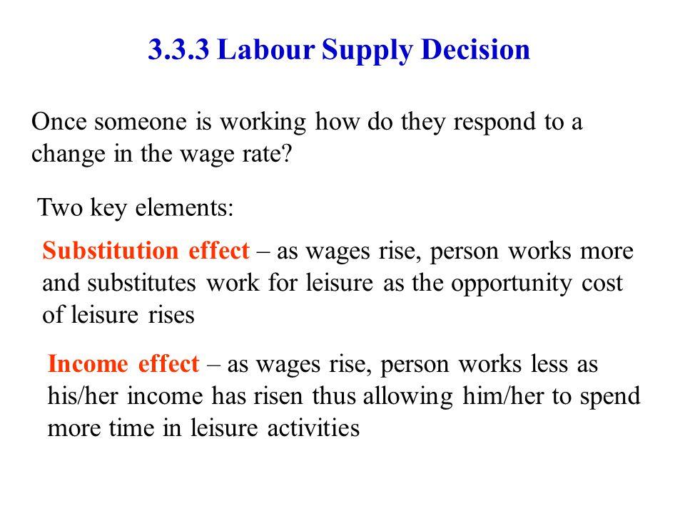 3.3.3 Labour Supply Decision