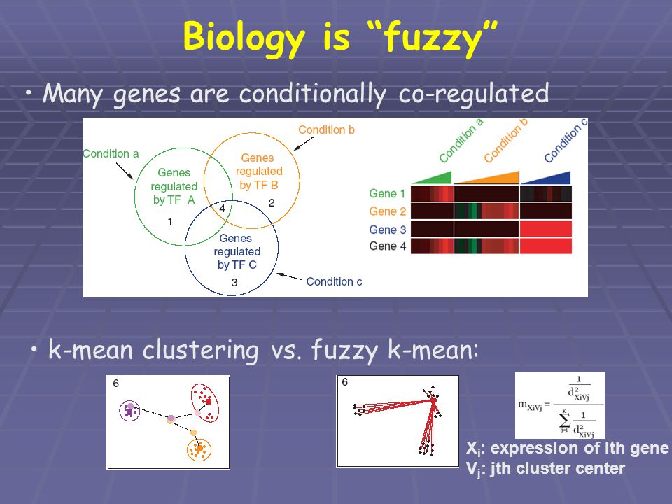 Biology is fuzzy Many genes are conditionally co-regulated