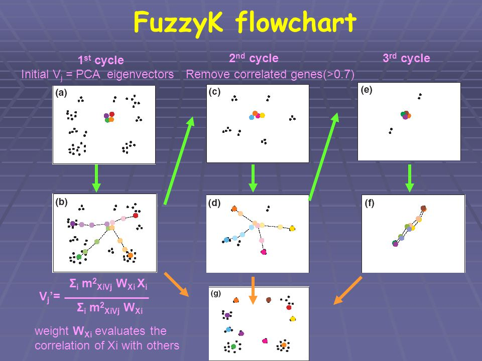 FuzzyK flowchart 1st cycle 2nd cycle Remove correlated genes(>0.7)