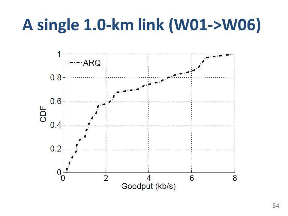 A single 1.0-km link (W01->W06)