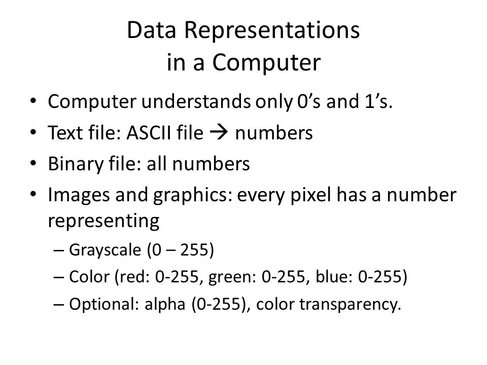 Data Representations in a Computer