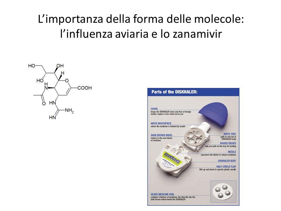 L'importanza della forma delle molecole: l'influenza aviaria e lo zanamivir