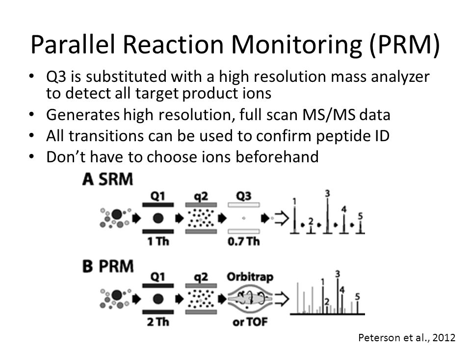 Parallel Reaction Monitoring (PRM)