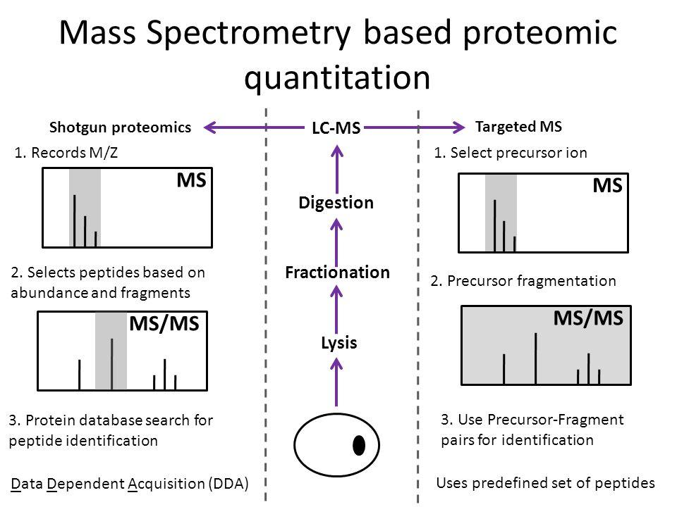 Mass Spectrometry based proteomic quantitation