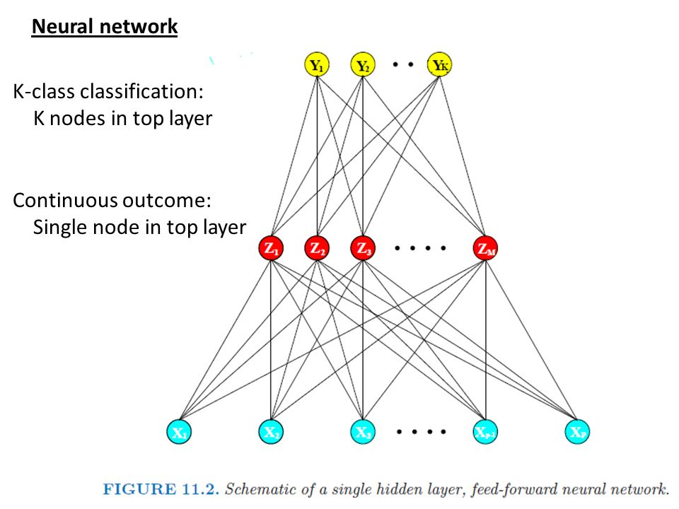 Neural network K-class classification: K nodes in top layer.