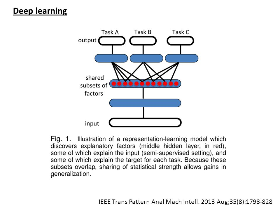 Deep learning IEEE Trans Pattern Anal Mach Intell. 2013 Aug;35(8):1798-828