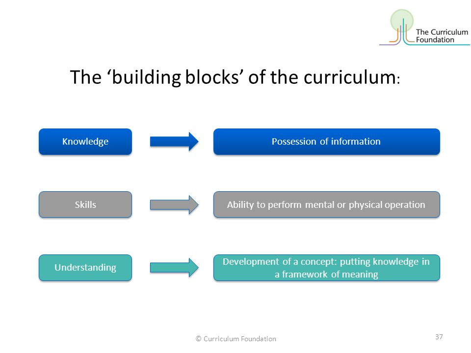 The 'building blocks' of the curriculum: