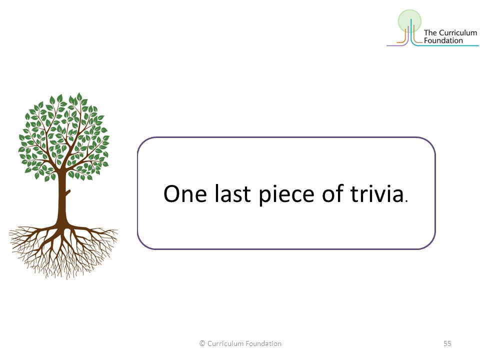 One last piece of trivia.