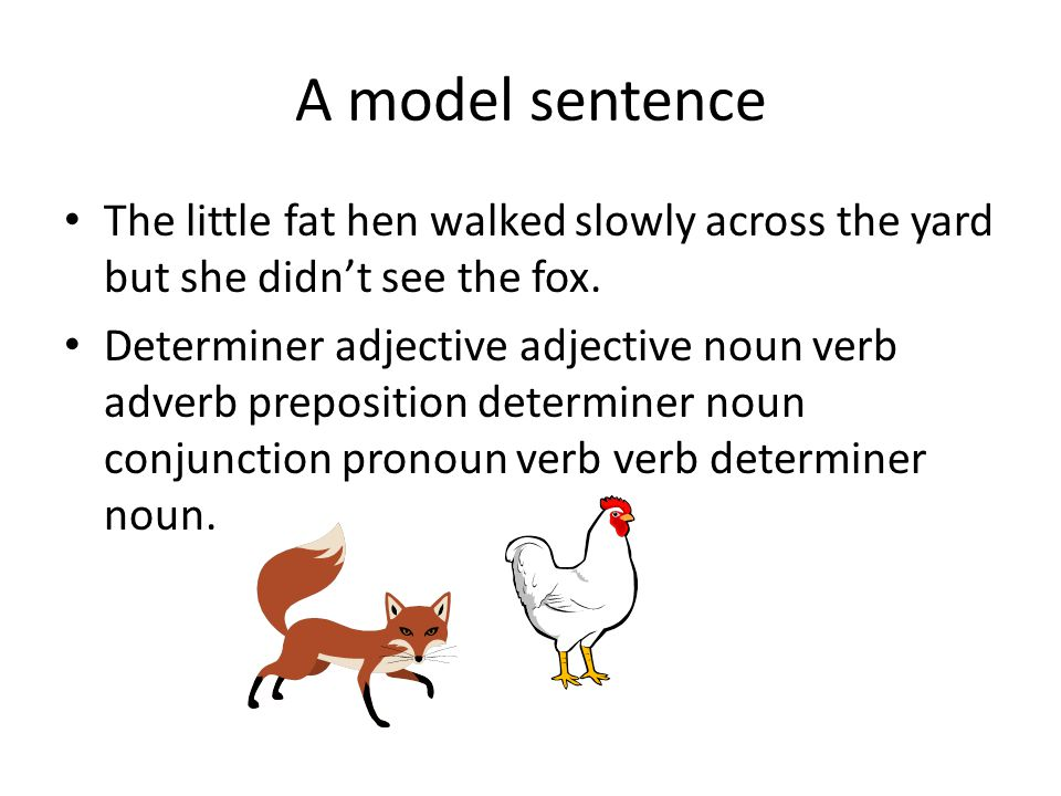 A model sentence The little fat hen walked slowly across the yard but she didn't see the fox.