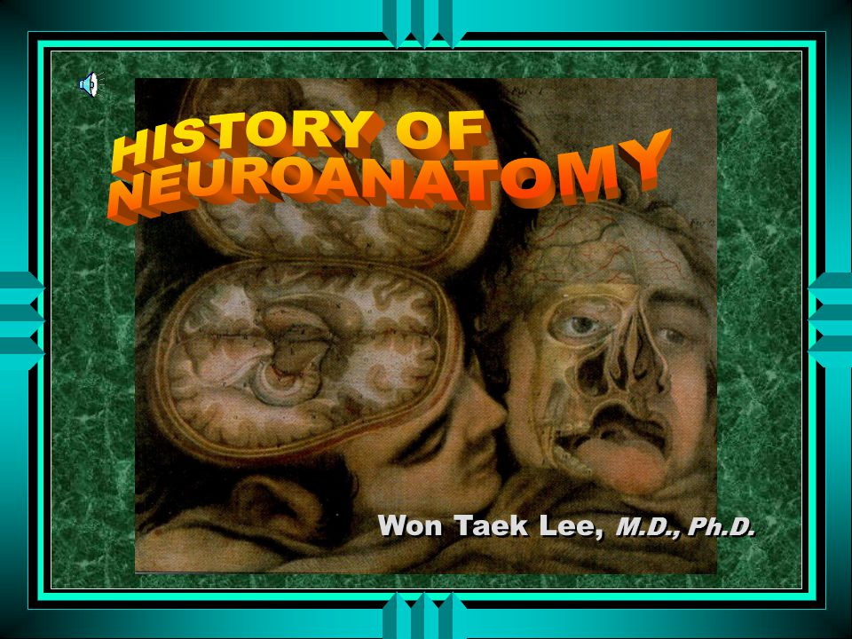 HISTORY OF NEUROANATOMY Won Taek Lee, M.D., Ph.D.
