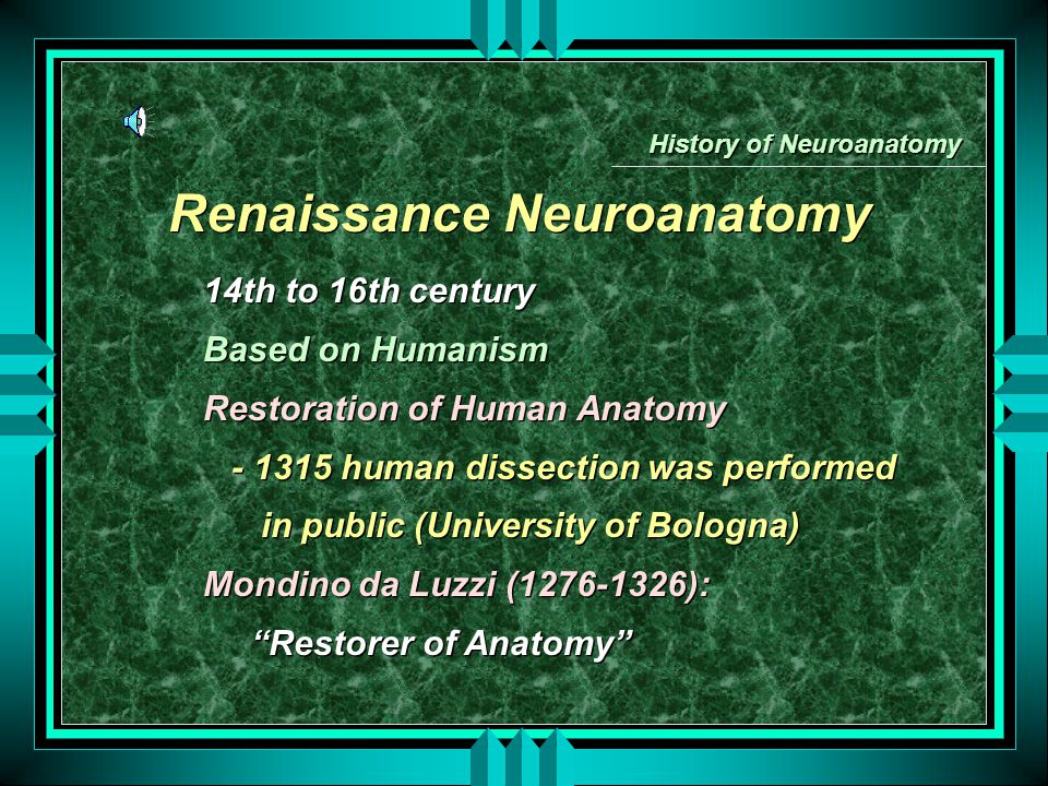 History of Neuroanatomy Renaissance Neuroanatomy