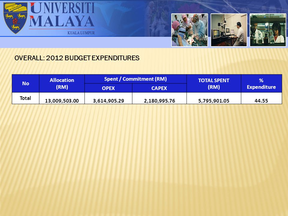 OVERALL: 2012 BUDGET EXPENDITURES Spent / Commitment (RM)
