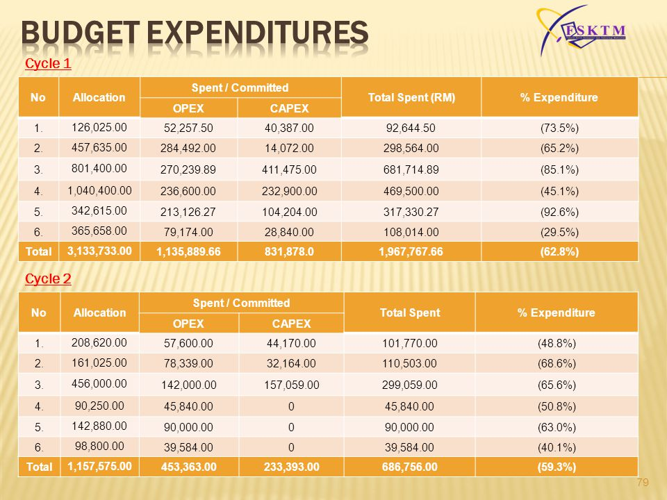 BUDGET expenditures Cycle 1 Cycle 2 No Allocation Spent / Committed