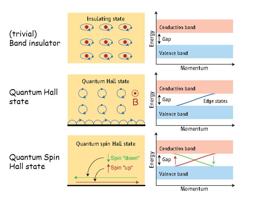 (trivial) Band insulator Quantum Hall state Quantum Spin Hall state