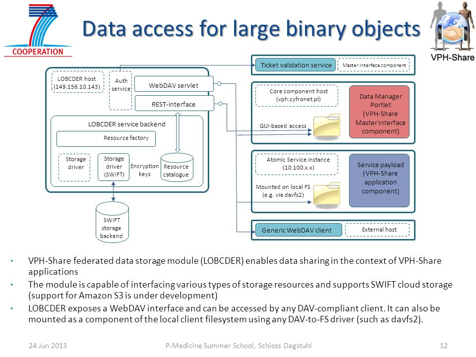 Data access for large binary objects