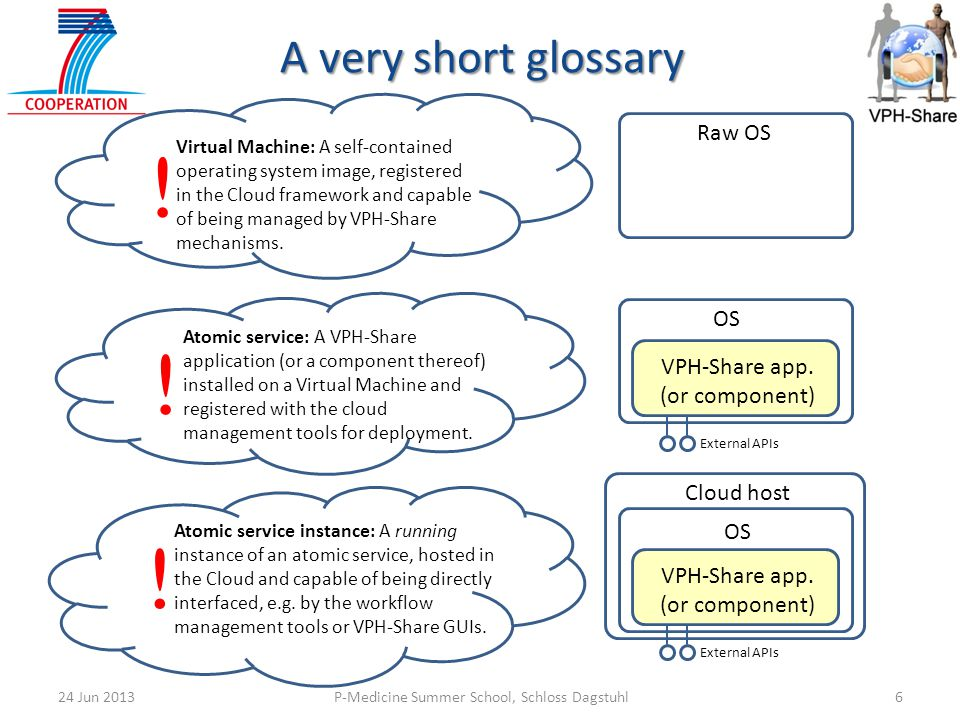 ! ! ! A very short glossary Raw OS OS VPH-Share app. (or component)