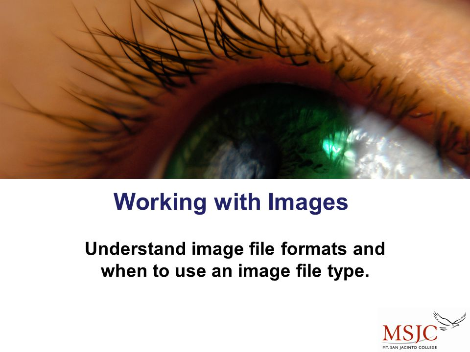 Understand image file formats and when to use an image file type.