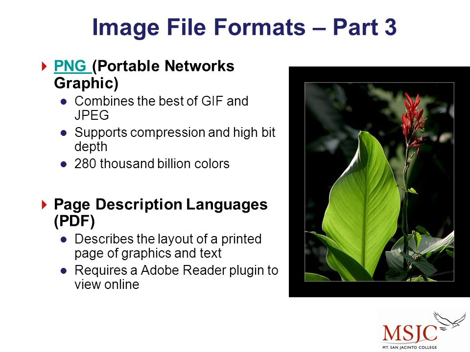 Image File Formats – Part 3