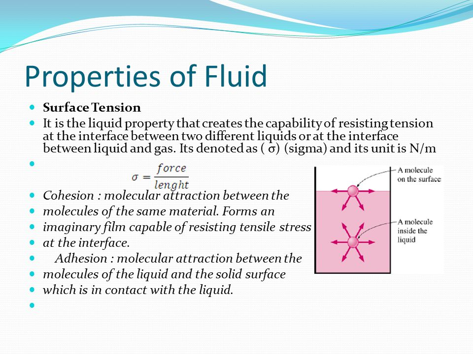 Properties of Fluid Surface Tension