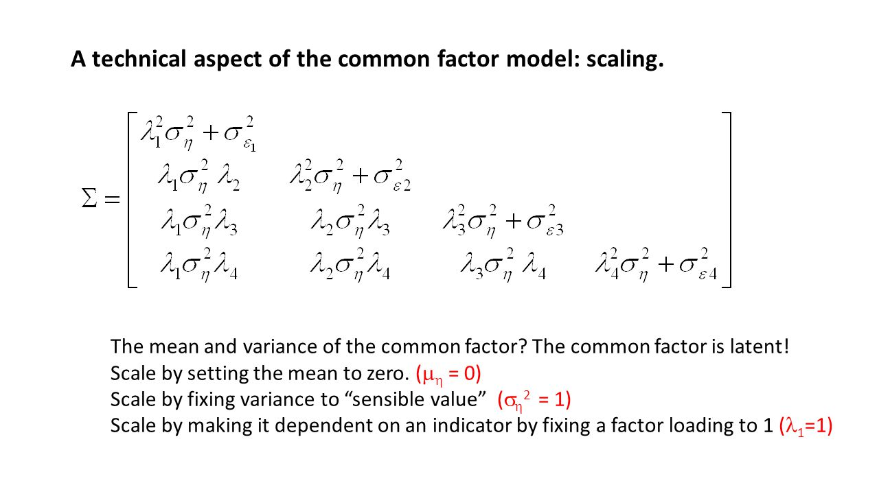 A technical aspect of the common factor model: scaling.