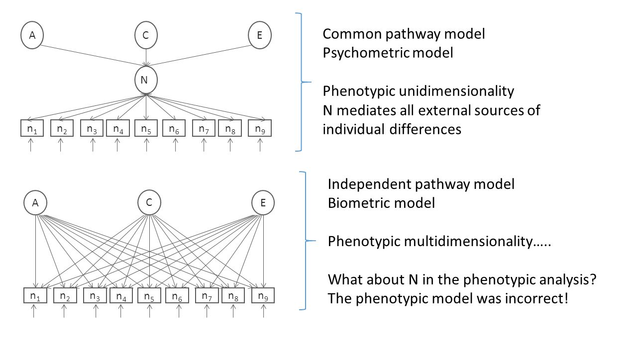 Phenotypic unidimensionality