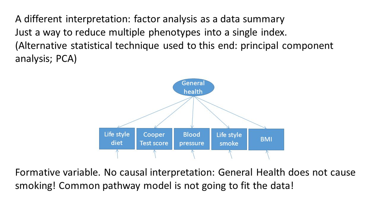 A different interpretation: factor analysis as a data summary