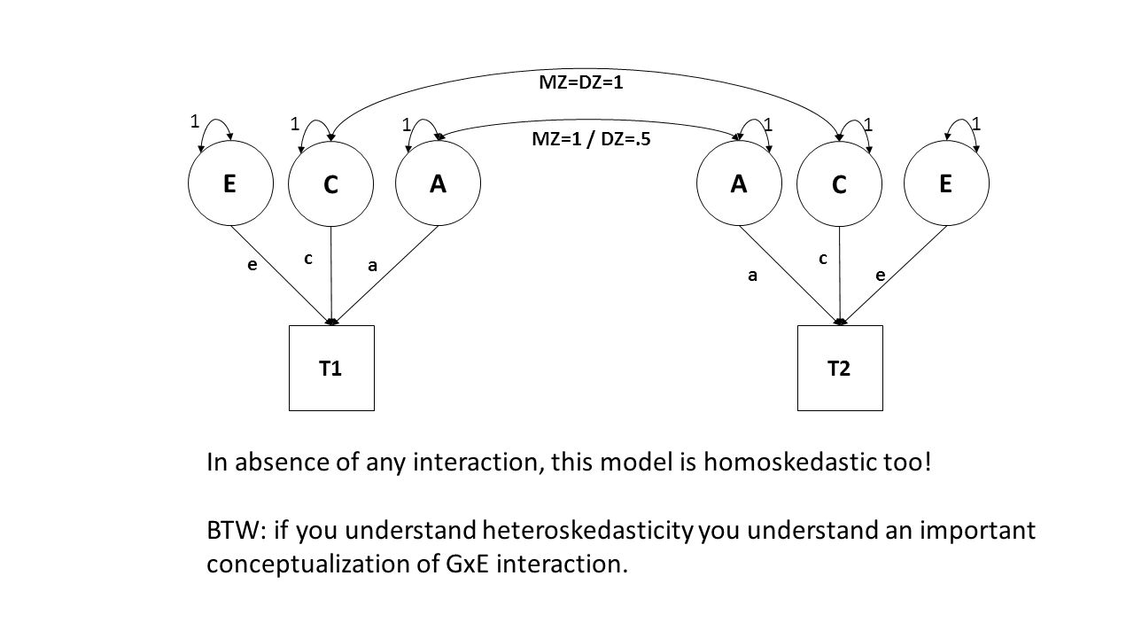 In absence of any interaction, this model is homoskedastic too!