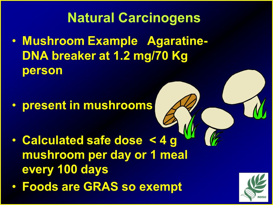 Natural Carcinogens Mushroom Example Agaratine- DNA breaker at 1.2 mg/70 Kg person. present in mushrooms.